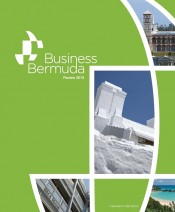 Business Bermuda Review 2013